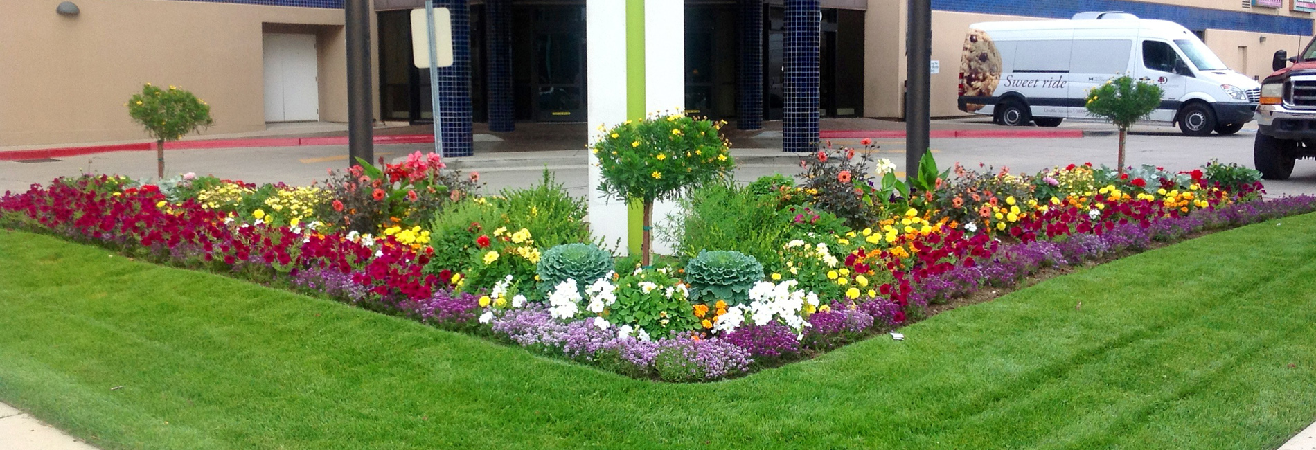 Commercial Landscaping ServicesProfessional | Reliable | Experienced